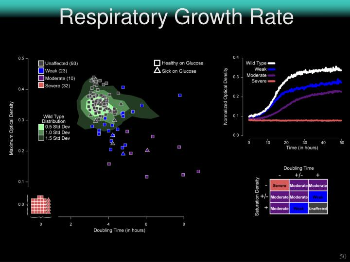 Respiratory Growth Rate