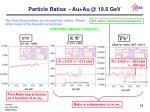 particle ratios au au @ 19 6 gev