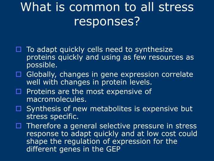 What is common to all stress responses?