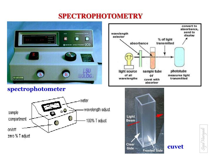 a lab experiment to understand the uses of spectrophotometry Experiment 4 absorption spectrophotometry: direct-measurement option this is a group experiment people in each group will share one set of calibration.