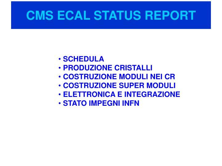 cms ecal status report n.