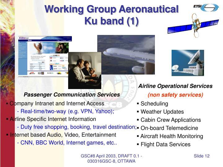 Working Group Aeronautical