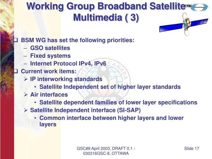 Working Group Broadband Satellite Multimedia ( 3)
