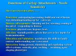 functions of caring attachments needs sensitivity