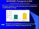 morphine passage de la bhe cisternino et al pharm res 2001