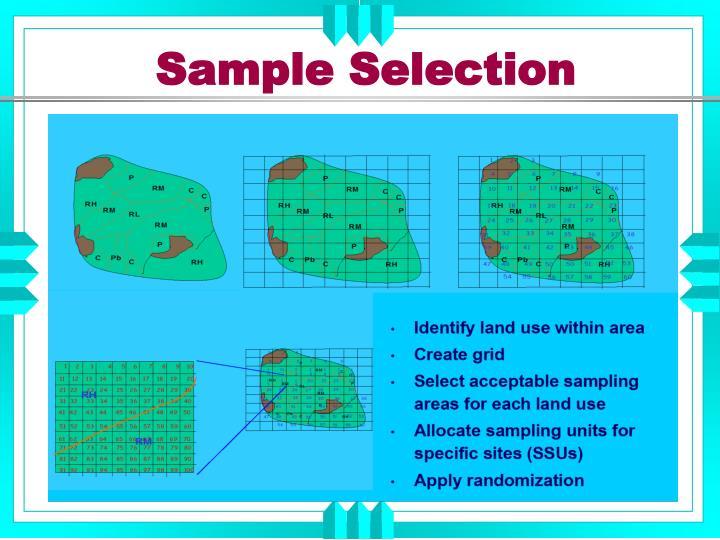 Sample Selection