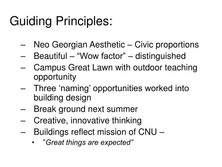 guiding principles n.