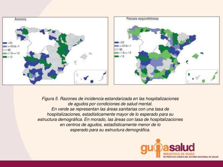 Figura 5. Razones de incidencia estandarizada en las hospitalizaciones
