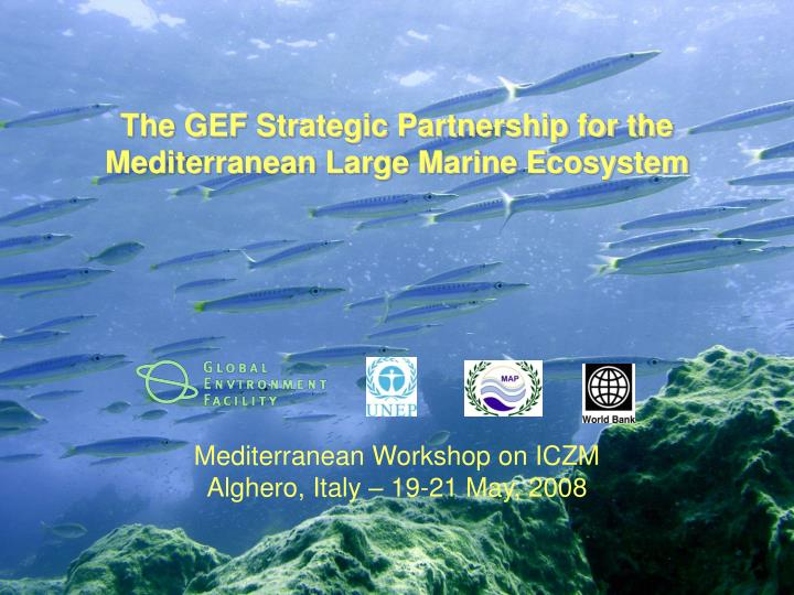 The GEF Strategic Partnership for the Mediterranean Large Marine Ecosystem