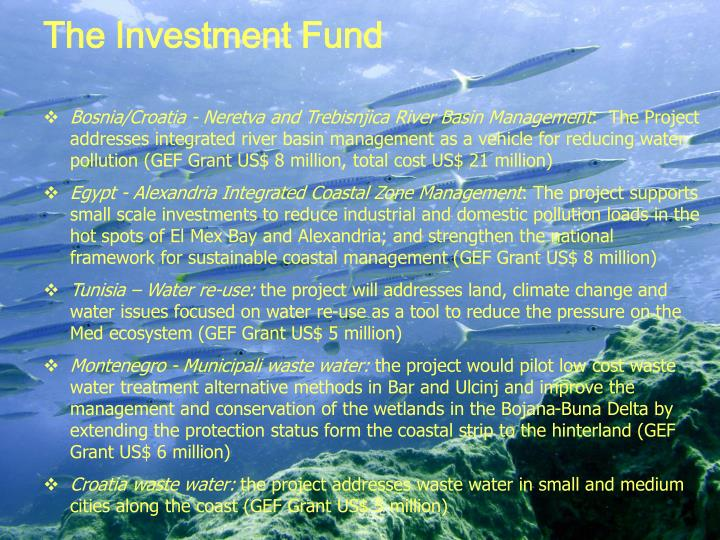 The Investment Fund