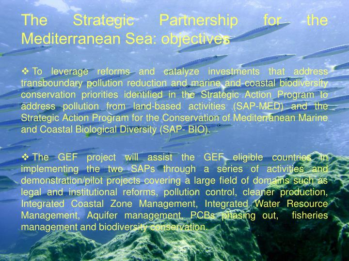 The Strategic Partnership for the Mediterranean Sea: objectives