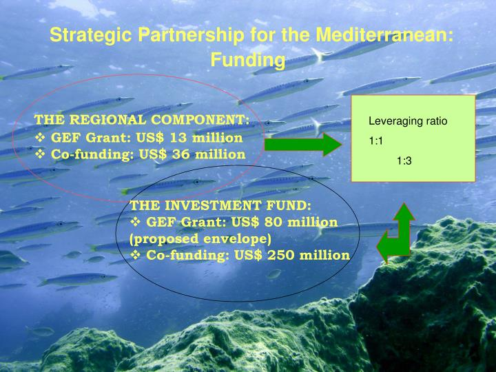 Strategic Partnership for the Mediterranean: Funding