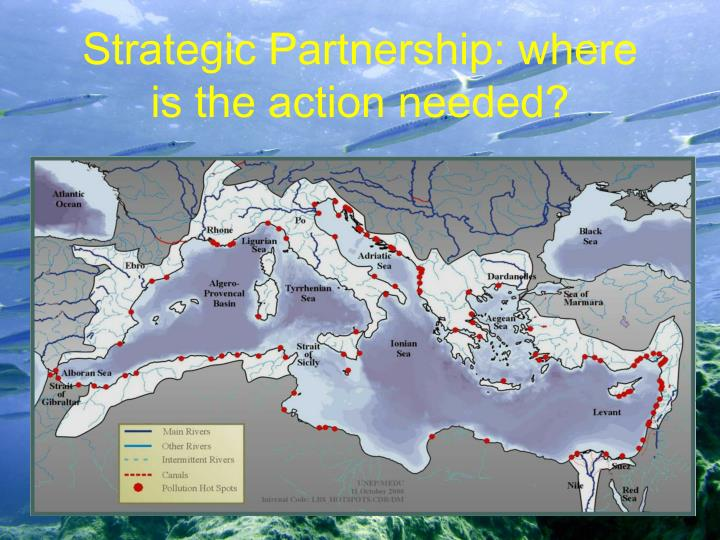 Strategic partnership where is the action needed