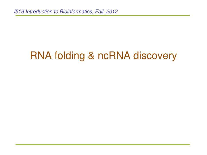 Rna folding ncrna discovery