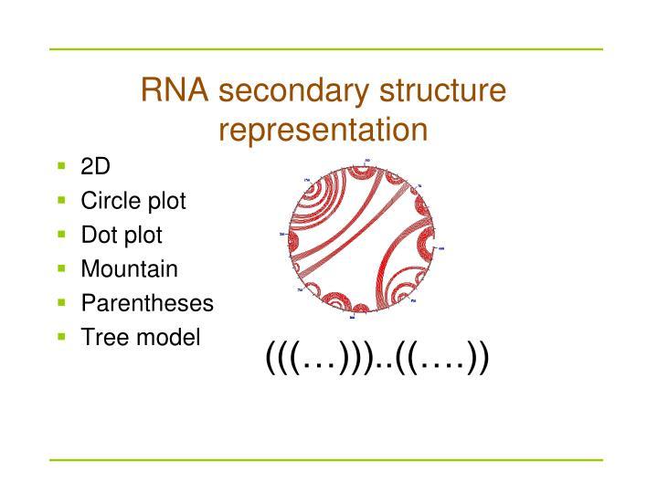 RNA secondary structure representation