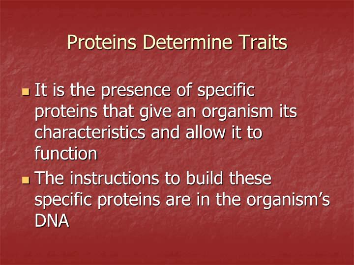 It is the presence of specific proteins that give an organism its characteristics and allow it to function