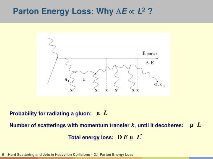 Parton Energy Loss: Why