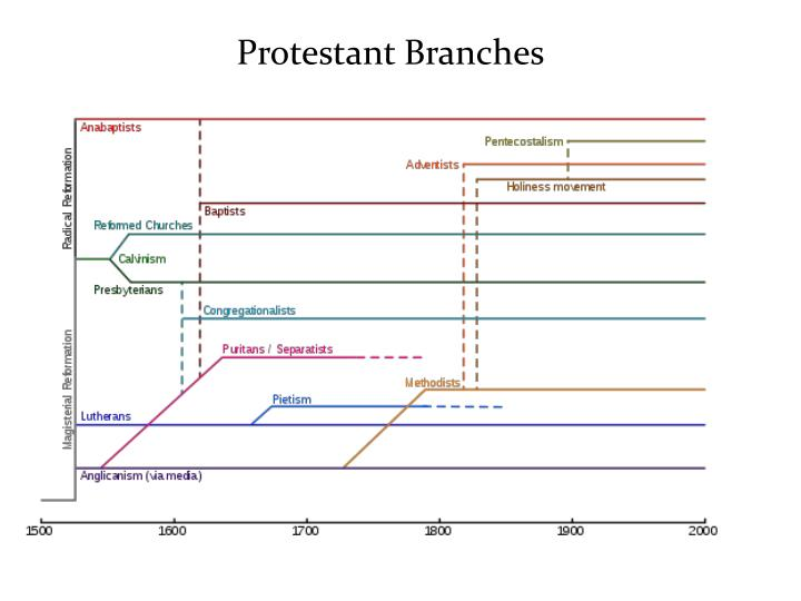 Protestant Branches