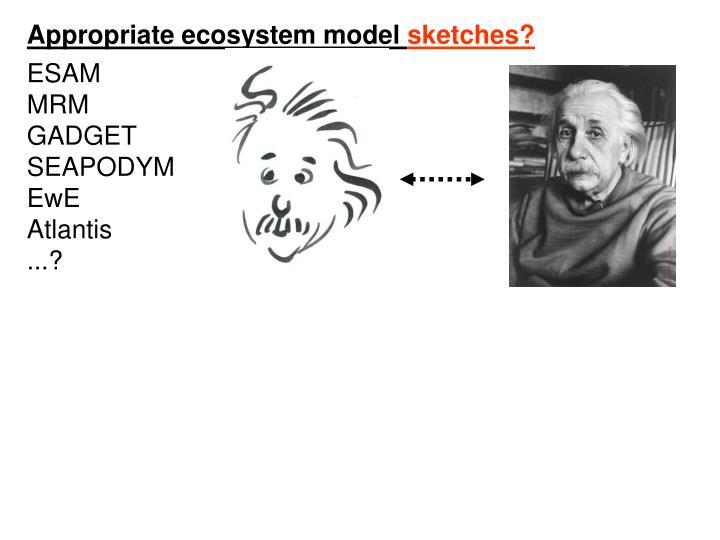 Appropriate ecosystem model