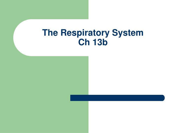 the respiratory system ch 13b n.