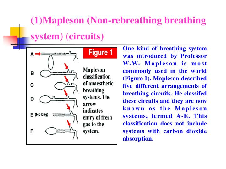 (1)Mapleson (Non-rebreathing breathing system) (circuits)