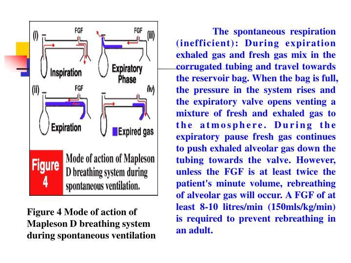 The spontaneous respiration (inefficient):