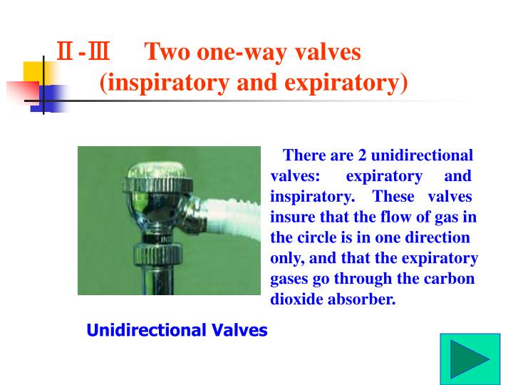 Ⅱ-Ⅲ     Two one-way valves (inspiratory and expiratory)