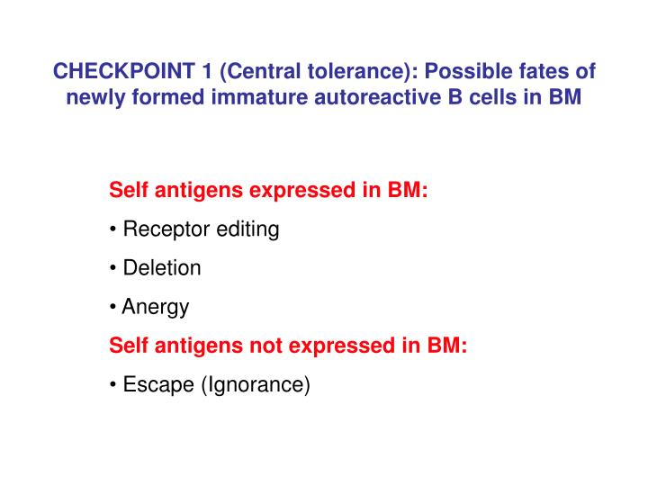 CHECKPOINT 1 (Central tolerance): Possible fates of newly formed immature autoreactive B cells in BM