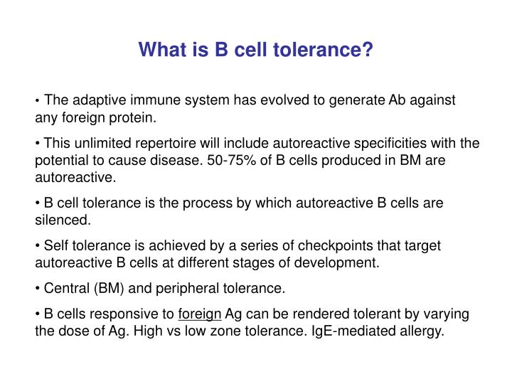 What is b cell tolerance