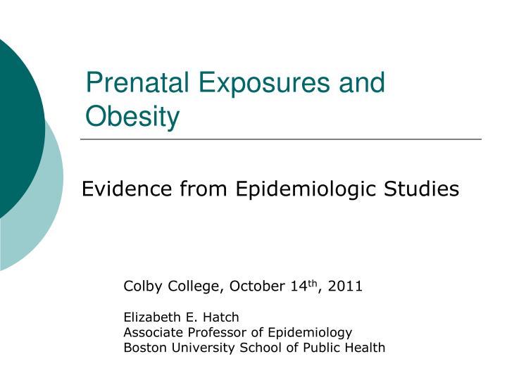 prenatal exposures and obesity n.