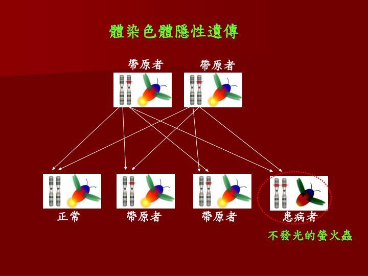 體染色體隱性遺傳