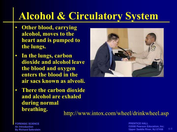 Alcohol & Circulatory System