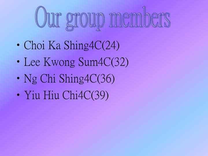 Our group members