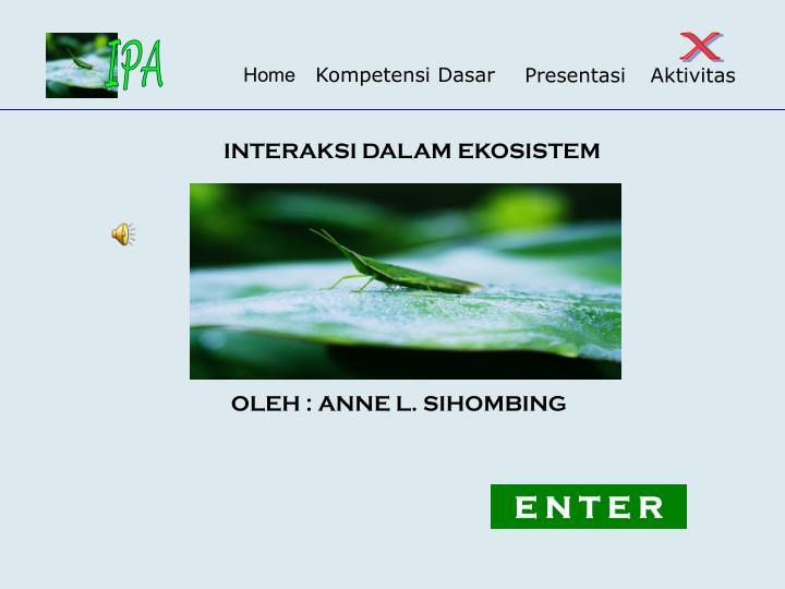 interaksi dalam ekosistem n.