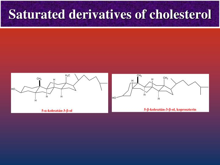 Saturated derivatives of cholesterol