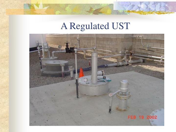 A Regulated UST