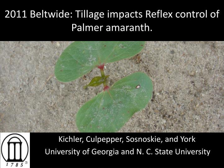 2011 beltwide tillage impacts reflex control of palmer amaranth