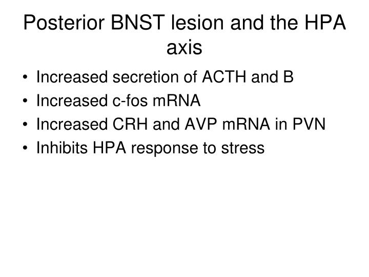 Posterior BNST lesion and the HPA axis