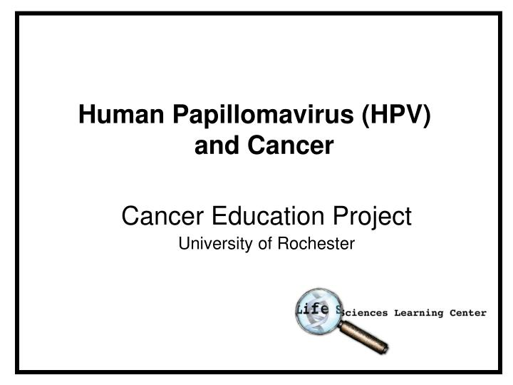hpv and cancer ppt)