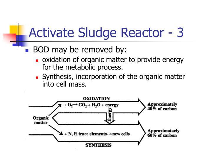 Activate Sludge Reactor - 3