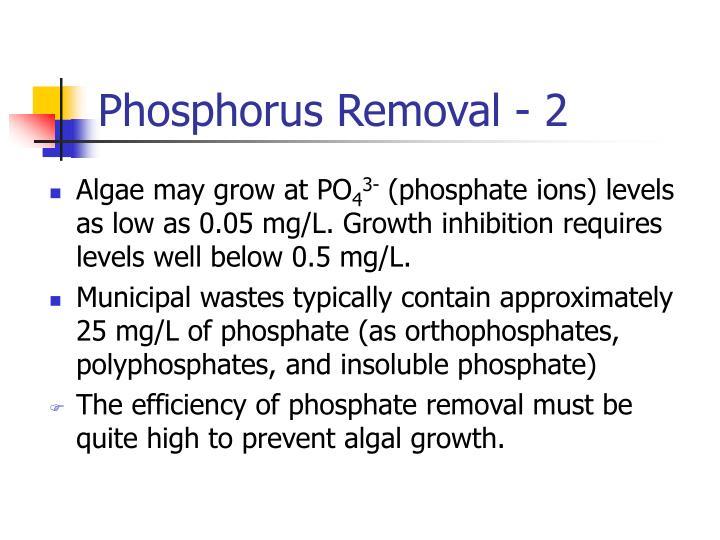 Phosphorus Removal - 2