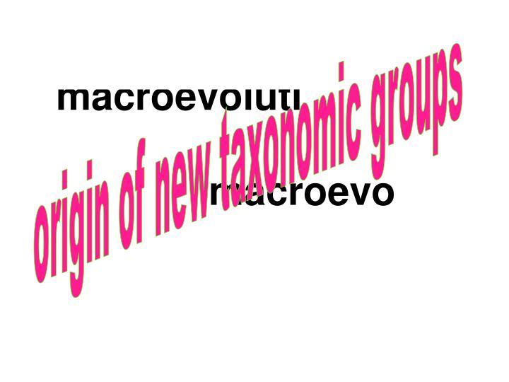 Origin of new taxonomic groups