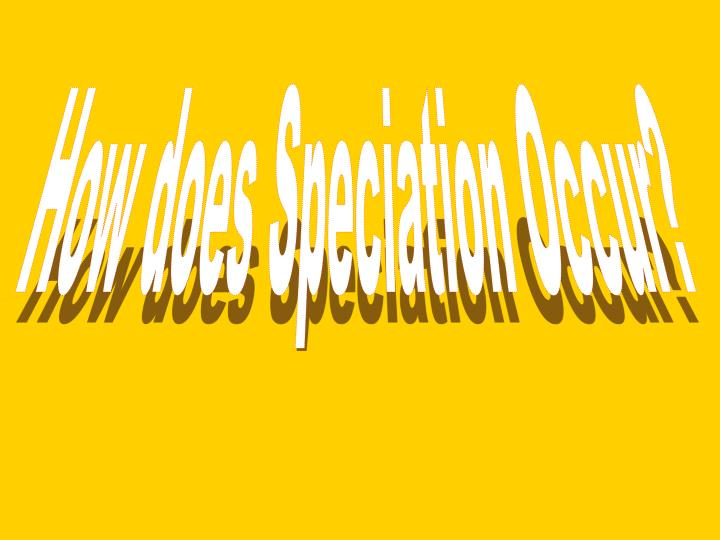 How does Speciation Occur?