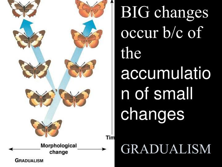 BIG changes occur b/c of the