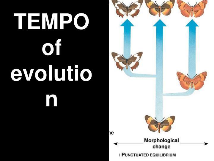 Polyploidy