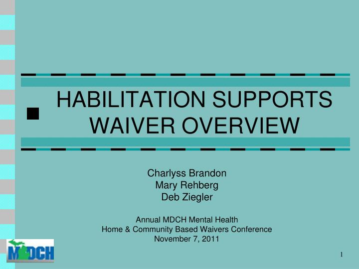 Habilitation supports waiver overview
