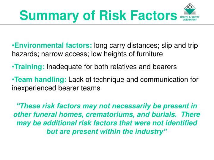 Summary of Risk Factors