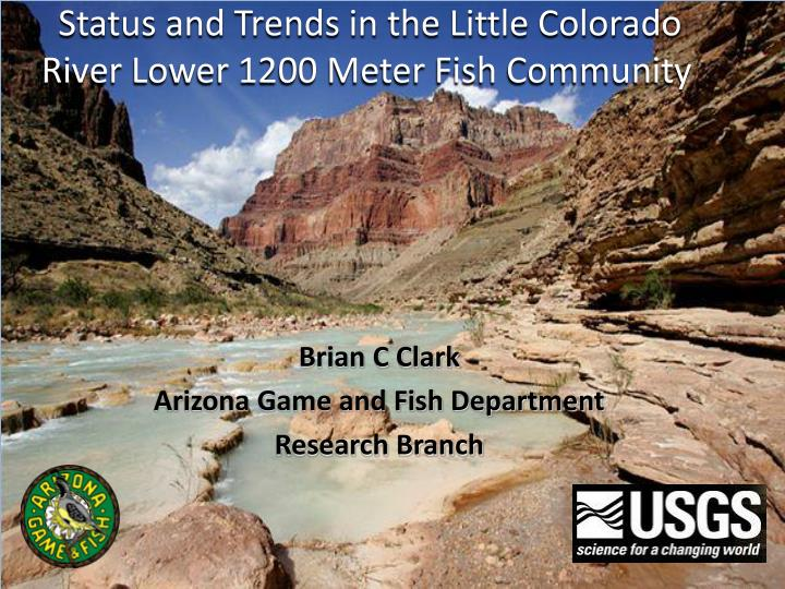 status and trends in the little colorado river lower 1200 meter fish community n.