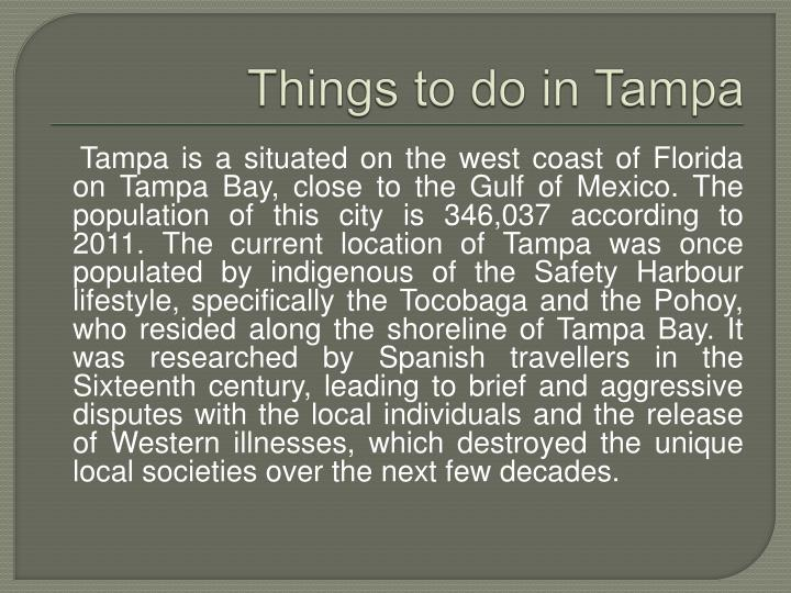 things to do in tampa n.