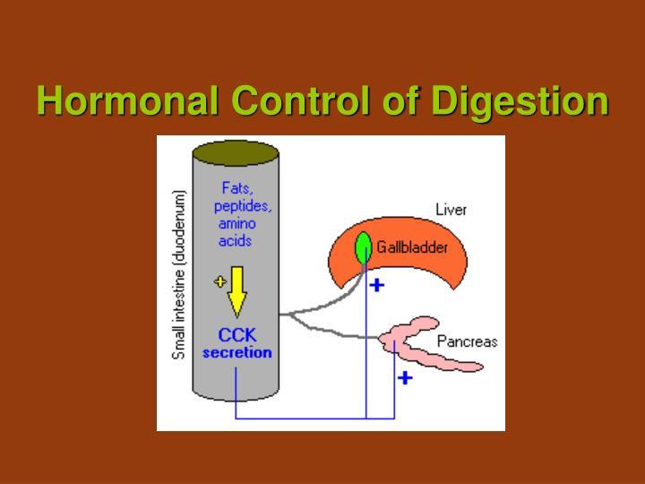 hormonal control of digestion n.